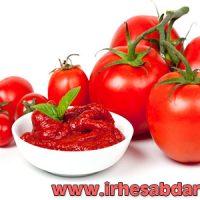 دانلود پروژه کارآفرینی شرکت تولید رب گوجه فرنگی