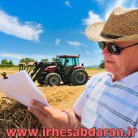 پروژه مالی حسابداری محصولات کشاورزی (قارچ خوراکی)