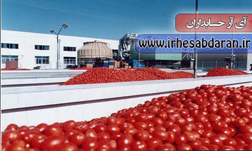 پروژه مالی حقوق و دستمزد شرکت رب گوجه فرنگی
